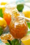 Marmellata d'arance della limetta e del limone Fotografie Stock Libere da Diritti