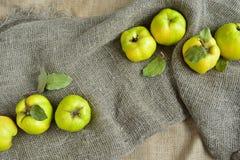 Marmelo verde maduro no despedida cinzento Imagem de Stock