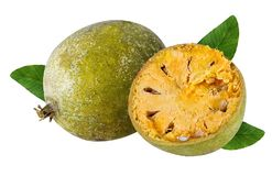 Marmelos de fruit de Bael ou en bois de pomme de fruit d'Aegle sur un blanc images libres de droits