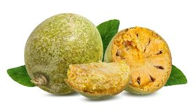 Marmelos del fruta de Bael o maderas de la manzana de la fruta de Aegle en un blanco Fotografía de archivo libre de regalías