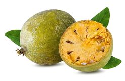 Marmelos del fruta de Bael o maderas de la manzana de la fruta de Aegle en un blanco Imágenes de archivo libres de regalías