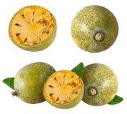 Marmelos del fruta de Bael o maderas de la manzana de la fruta de Aegle en un blanco Fotografía de archivo