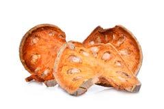 Marmelos secados del aegle del té de la fruta del bael aislados en blanco Foto de archivo libre de regalías