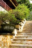 Marmer trappa Arkivfoton