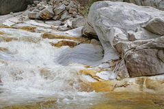 Marmeren Dalingen, Sequoia Stock Afbeeldingen