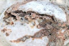 Marmeren grijze bruine achtergrond van schoonheidstextuur Royalty-vrije Stock Fotografie