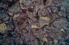 Marmeren textuur abstract patroon als achtergrond met hoge resolutie Stock Fotografie