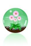 Marmo di vetro Immagine Stock