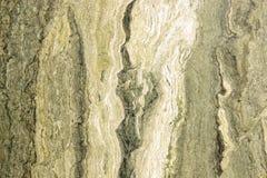 Marmo verde Fotografie Stock Libere da Diritti