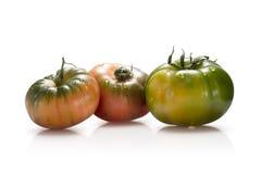 Marmonde tomatoes Stock Photography