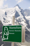 Marmont's nameplate on high rock in Alps. Austria. Stock Photo