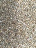 Marmor framför bakgrund Fotografering för Bildbyråer