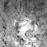Marmorera bakgrund, marmorera textur, marmortapet, f?r utskrift, design av fall och yttersidor fotografering för bildbyråer