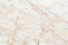 Marmorera (brun) textur, den detaljerade strukturen av marmor i naturligt mönstrat för bakgrund och designen Royaltyfri Foto