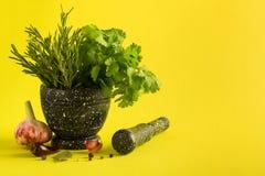 Marmorera mortel och mortelstötar med rosmarinvitlök och peppar fotografering för bildbyråer