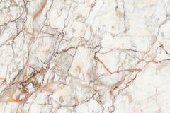 Marmorera textur i naturligt mönstrat för bakgrund och design arkivbilder
