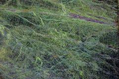 Marmorinnenraumfliesen der Art des Bodens 3d lizenzfreies stockfoto