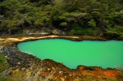 Marmorterrasse, Waimangu vulkanisches Tal Stockbilder