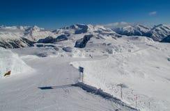 Marmota alpina Fotos de archivo libres de regalías