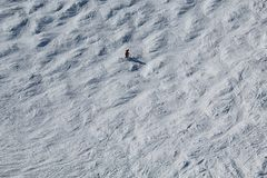 Marmota de esquí A.C. Canadá de las cuestas fotografía de archivo libre de regalías