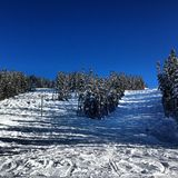 Marmota Heli Skiing Fotos de archivo
