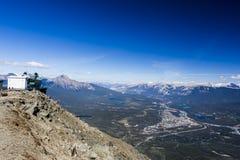 Marmotas montaña, Jasper National Park Imágenes de archivo libres de regalías