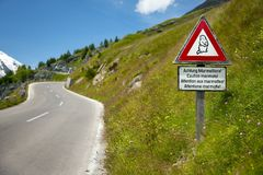 Marmots. Warning sign by an alpine road Stock Photos