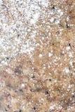 Marmur z weath mąką obraz stock