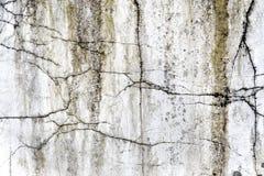 Marmurowa tekstura lub kamień tekstura dla tła Obraz Royalty Free