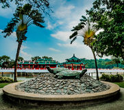 Marmurowa Tortoises Kusu wyspa Singapur obrazy stock