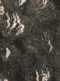 marmurowy ćma orchidei cegiełki kamień Fotografia Stock