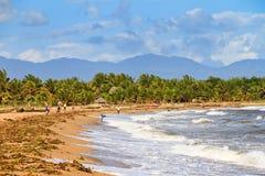 Maroantsetra海滩 图库摄影