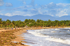 Maroantsetra strand Arkivbild