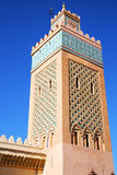 Maroc africa  and the blue    sky Royalty Free Stock Photo