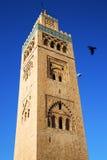 In maroc africa minaret and the bird. In maroc africa   minaret and the blue  sky Stock Image