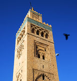 In maroc africa minaret and the blue    sky Stock Image