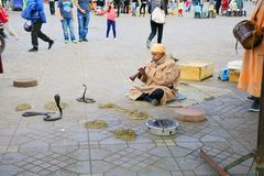 Maroc, Marrakech, charmeur de serpent Photos stock
