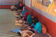 Women prepare argan oil in sahara desert near marrakesh Stock Images