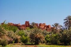 Marocco - palmträd i Quarzazate arkivbilder