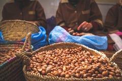Marockanska kvinnor som arbetar med arganfrö för att dra ut arganolja arkivfoto