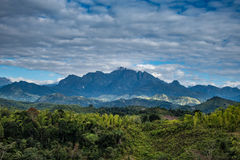 Free Marojejy Park View Under The Clouds Royalty Free Stock Image - 95264136