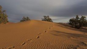 Marokańczyk pustynie 3 zdjęcie wideo