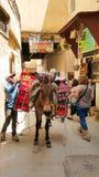 Marokański mężczyzna koli od muła rozładunek Obraz Royalty Free
