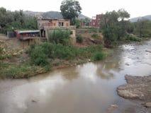 Marokańczyk domowy Landscript obrazy stock