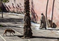 Marokkaanse mens en een dakloze hond Royalty-vrije Stock Afbeelding