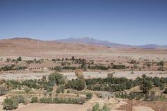 Marokkaanse oase Stock Afbeelding