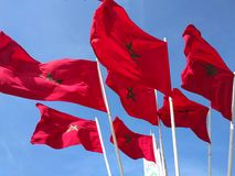 Marokkaanse vlaggen Stock Afbeelding