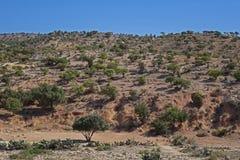 Marokkanische Landschaft Wüste Stockbild