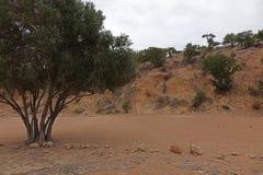 Marokkanische Landschaft Wüste Lizenzfreie Stockfotografie