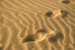 Marokkanische Wüste Lizenzfreie Stockfotos